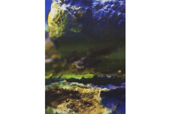 Azurite, Edouard Wolton, 2017 courtesy Galeries les Filles du Calvaire