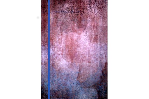 """penelOpe pandemOnium"""" (2014) 112 x 168 cm, peinture assistée par ordinateur sur velours© Galerie Richard, New York/Paris"""